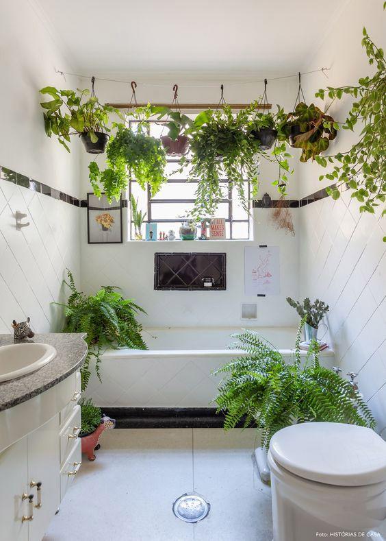 jardin suspendu salle de bain